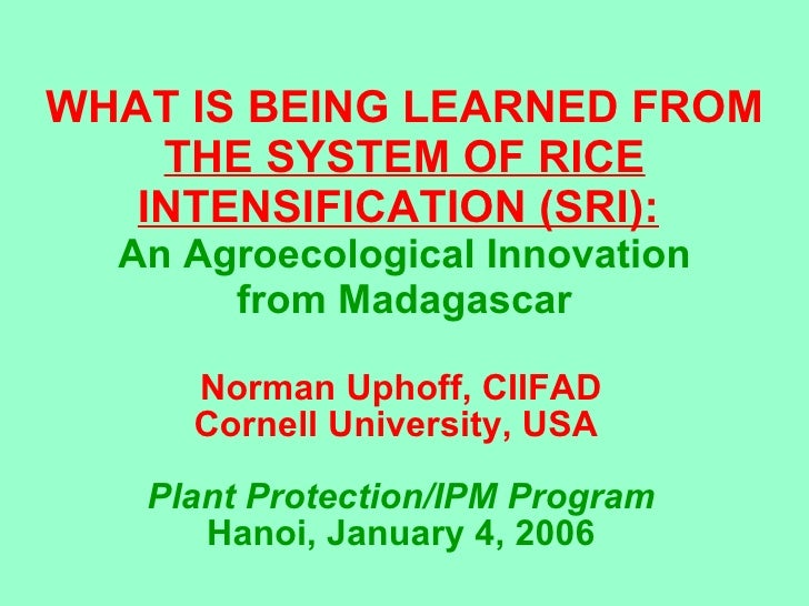 WHAT IS BEING LEARNED FROM  THE SYSTEM OF RICE INTENSIFICATION (SRI):   An Agroecological Innovation from Madagascar Norma...