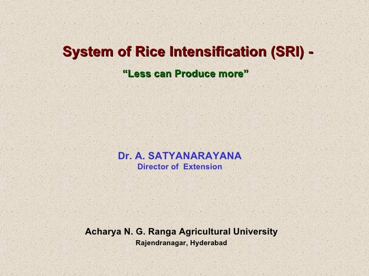 """System of Rice Intensification (SRI) - """" Less can Produce more""""   Dr. A. SATYANARAYANA Director of  Extension Acharya N. G..."""