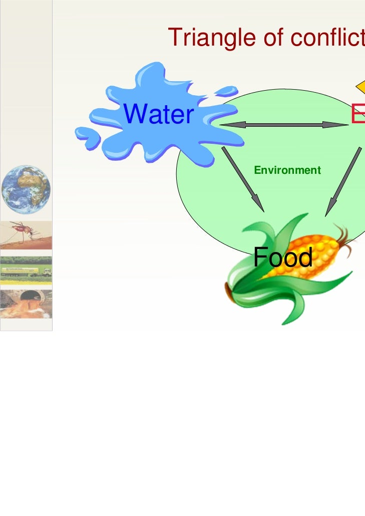 Triangle of conflictsWater                    Energy           Environment           Food