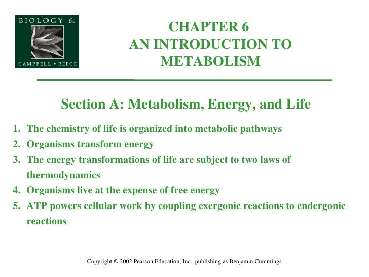 CHAPTER 6  AN INTRODUCTION TO METABOLISM Copyright © 2002 Pearson Education, Inc., publishing as Benjamin Cummings Section...