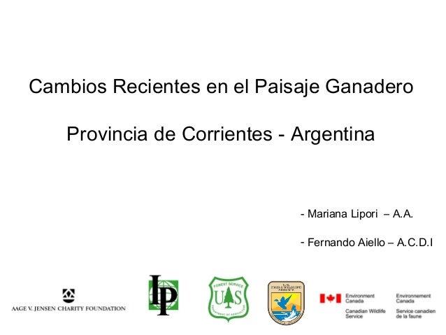 Cambios Recientes en el Paisaje Ganadero Provincia de Corrientes - Argentina - Mariana Lipori – A.A. - Fernando Aiello – A...