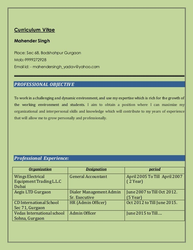 Best Resume In Accounts In Gurgaon Contemporary - Best Resume ...