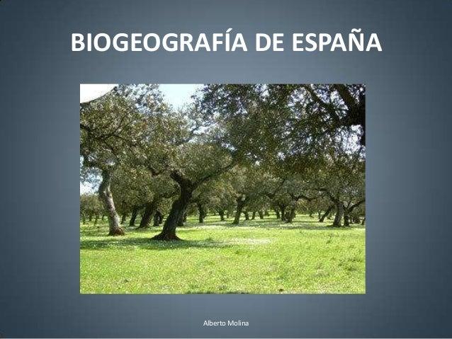 BIOGEOGRAFÍA DE ESPAÑA         Alberto Molina