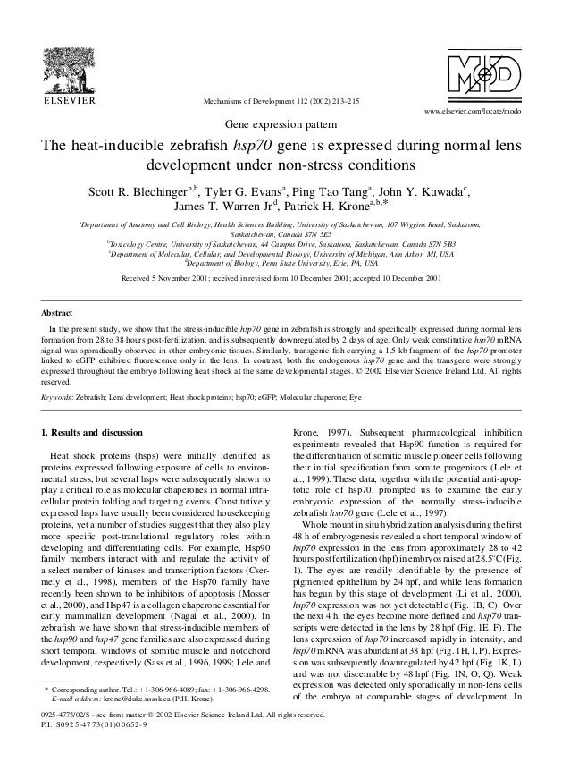 Gene expression pattern The heat-inducible zebrafish hsp70 gene is expressed during normal lens development under non-stres...