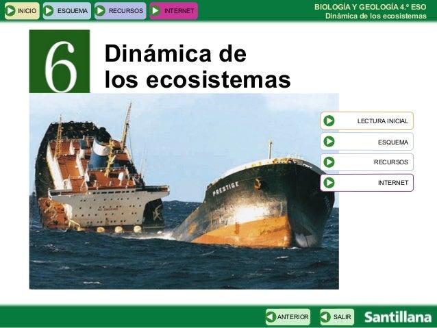 DINAMICA DE LOS ECOSISTEMAS DOWNLOAD