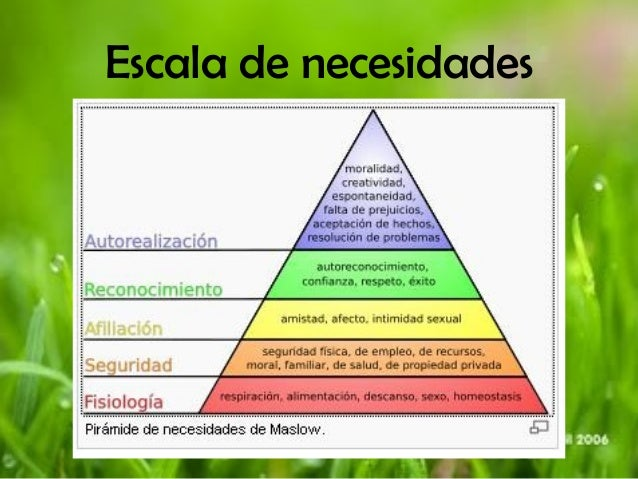 abraham maslow influence in curriculum designs Humanistic theory this is the psychological perspective popularized by carl rogers and abraham maslow that the influence of curriculum are necessary to.