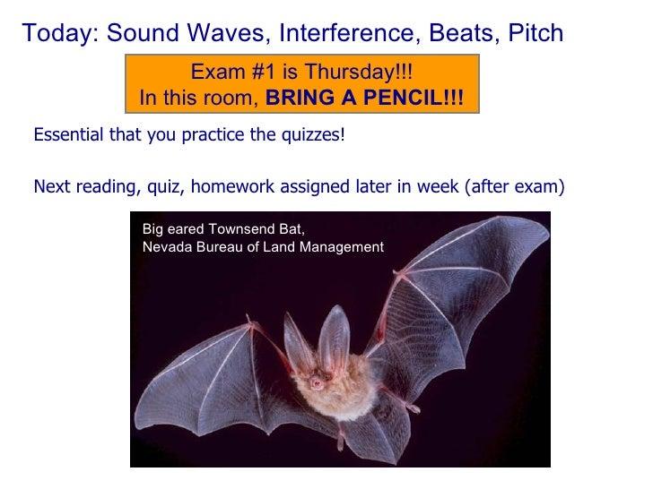 Today: Sound Waves, Interference, Beats, Pitch <ul><li>Essential that you practice the quizzes! </li></ul><ul><li>Next rea...