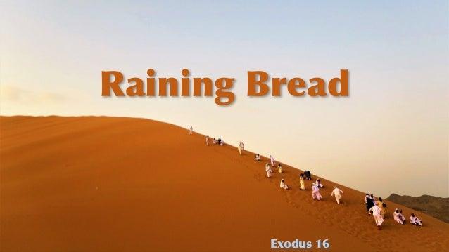 Raining Bread Exodus 16