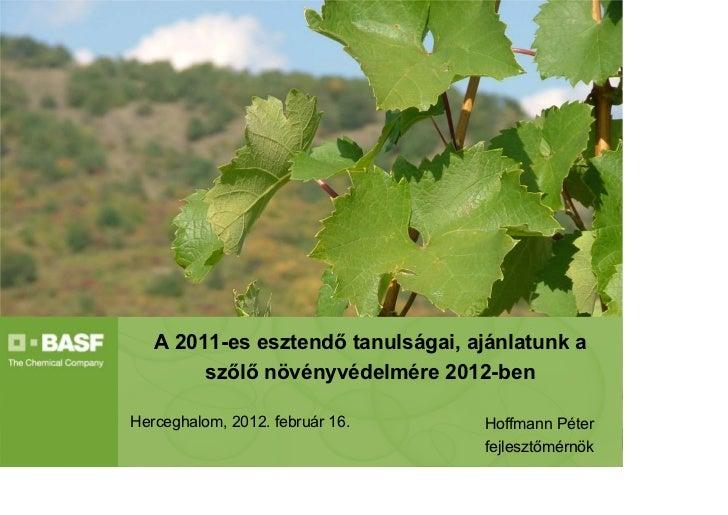 A 2011-es esztendő tanulságai, ajánlatunk a        szőlő növényvédelmére 2012-benHerceghalom, 2012. február 16.     Hoffma...