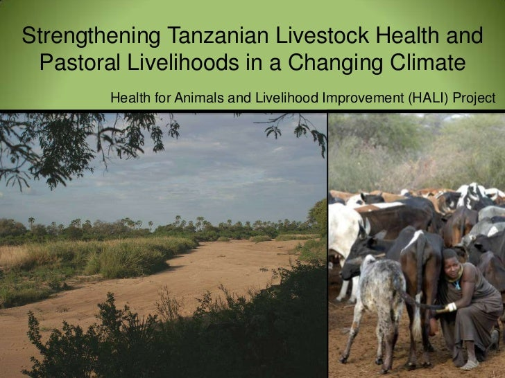 Strengthening Tanzanian Livestock Health and Pastoral Livelihoods in a Changing Climate<br />Health for Animals and Liveli...