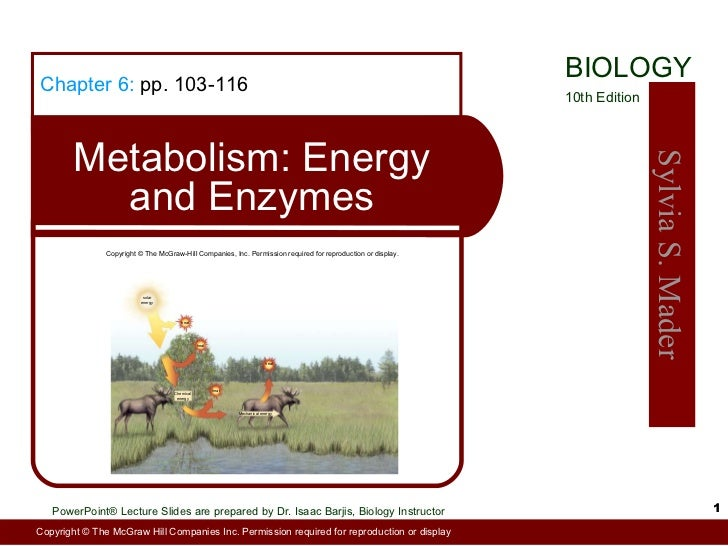 Chapter 6:  pp. 103-116 Metabolism: Energy and Enzymes Copyright © The McGraw-Hill Companies, Inc. Permission required for...