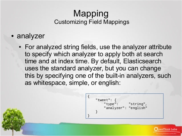 06 elasticsearch mapping and analysis