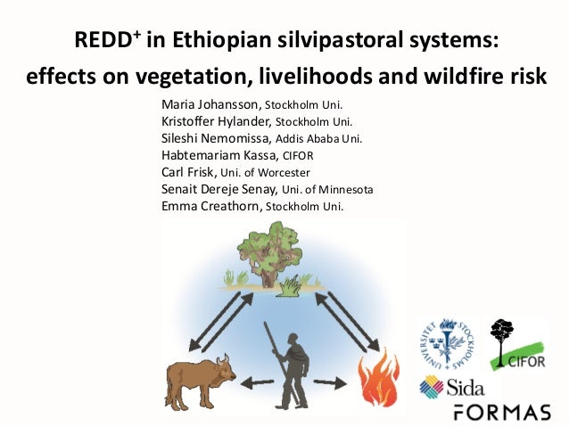 REDD+ in Ethiopian silvipastoral systems: effects on vegetation, livelihoods and wildfire risk Maria Johansson, Stockholm ...