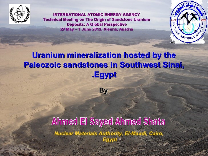 INTERNATIONAL ATOMIC ENERGY AGENCY    Technical Meeting on The Origin of Sandstone Uranium               Deposits: A Globa...