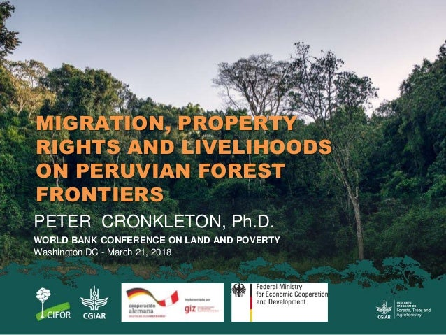 MIGRATION, PROPERTY RIGHTS AND LIVELIHOODS ON PERUVIAN FOREST FRONTIERS PETER CRONKLETON, Ph.D. WORLD BANK CONFERENCE ON L...