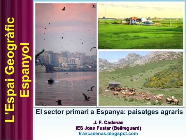 El sector primari a Espanya: paisatges agraris L'EspaiGeogràfic Espanyol J. F. CadenasJ. F. Cadenas IES Joan Fuster (Bellr...