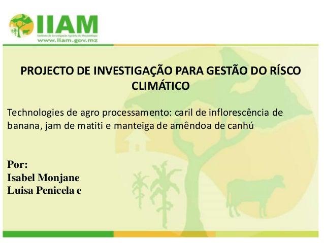 PROJECTO DE INVESTIGAÇÃO PARA GESTÃO DO RÍSCO CLIMÁTICO Technologies de agro processamento: caril de inflorescência de ban...
