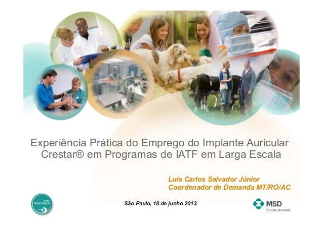 Experiência Prática do Emprego do Implante AuricularCrestar® em Programas de IATF em Larga EscalaLuís Carlos Salvador Júni...