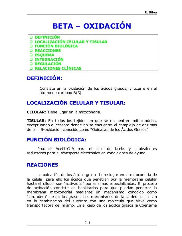 07 beta oxidacion On definicion de beta