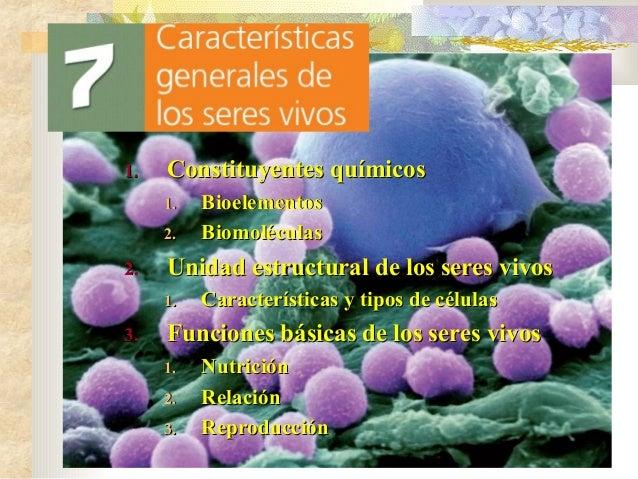 1.  Constituyentes químicos 1. 2.  2.  Unidad estructural de los seres vivos 1.  3.  Bioelementos Biomoléculas Característ...