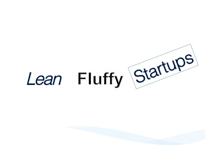 Lean Fluffy Startup?       Lean Thinking     Cloud Computing       Small Company