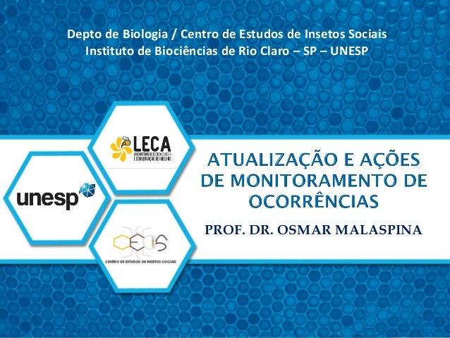 PROF. DR. OSMAR MALASPINA Depto de Biologia / Centro de Estudos de Insetos Sociais Instituto de Biociências de Rio Claro –...