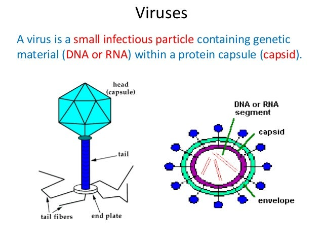Examples of pandemic diseases