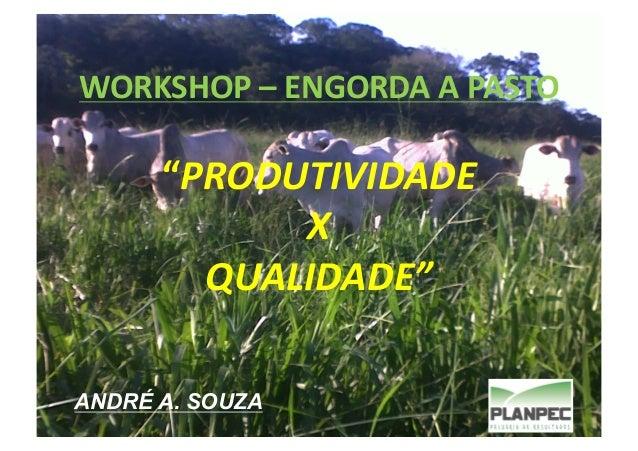"""WORKSHOP  –  ENGORDA  A  PASTO    """"PRODUTIVIDADE   X   QUALIDADE""""   ANDRÉ A. SOUZA"""