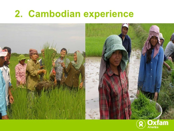 2.  Cambodian experience