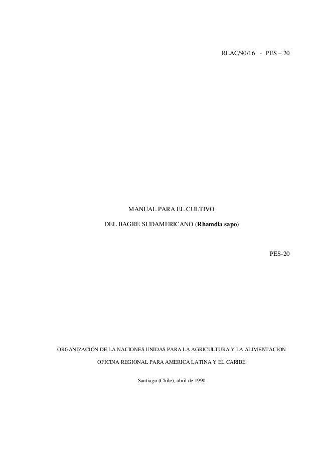 RLAC/90/16 - PES – 20                      MANUAL PARA EL CULTIVO              DEL BAGRE SUDAMERICANO (Rhamdia sapo)      ...