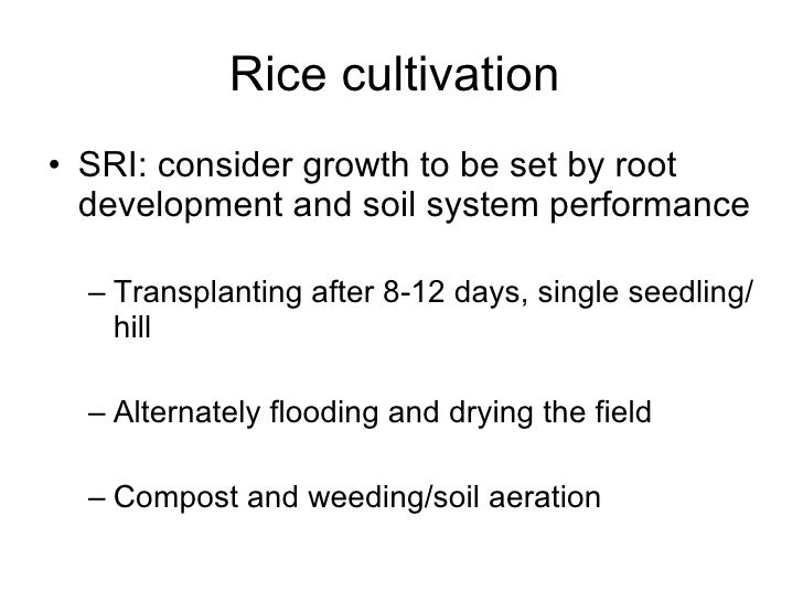 0735 Facing The Ecology Of Green Revolution Rice The Controversy Aro