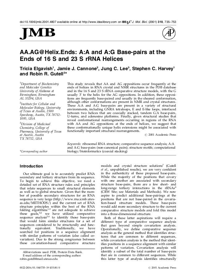 AA.AG@Helix.Ends: A:A and A:G Base-pairs at theEnds of 16 S and 23 S rRNA HelicesTricia Elgavish1, Jamie J. Cannone2, Jung...