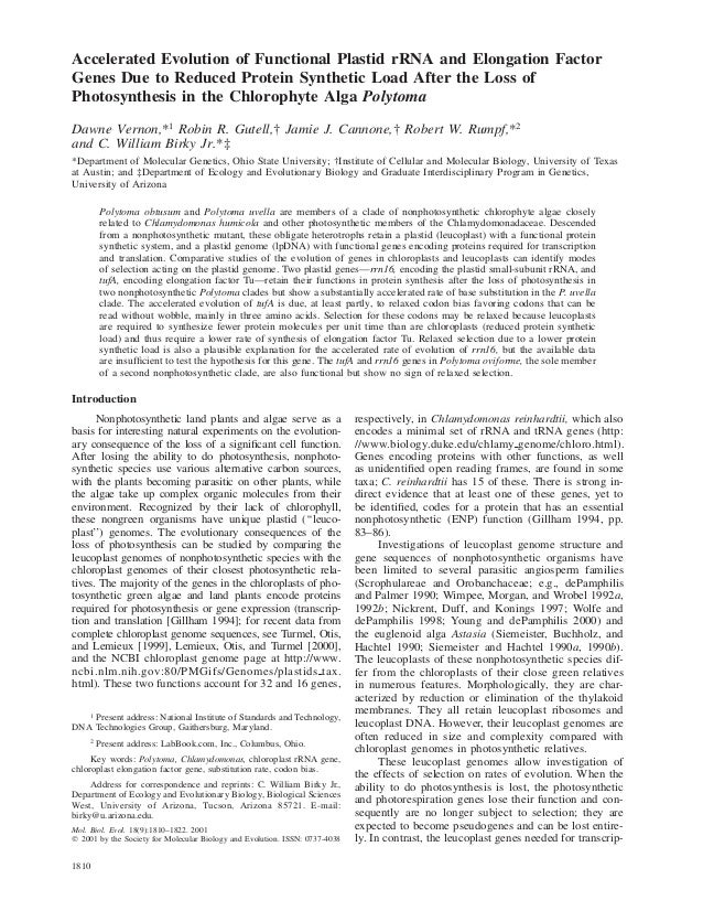 1810Mol. Biol. Evol. 18(9):1810–1822. 2001᭧ 2001 by the Society for Molecular Biology and Evolution. ISSN: 0737-4038Accele...
