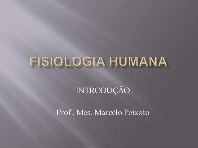 INTRODUÇÃO Profº. Mes. Marcelo Peixoto