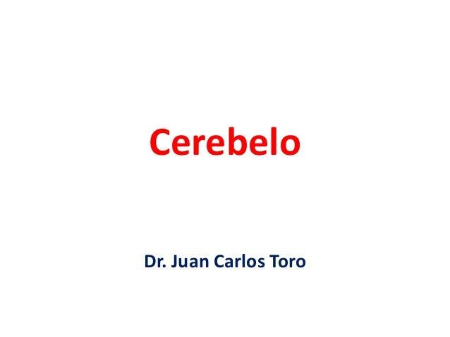 Cerebelo Dr. Juan Carlos Toro