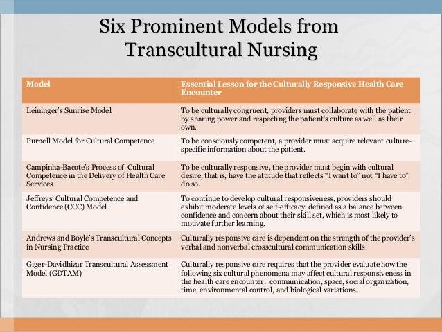 giger and davidhizar transcultural model