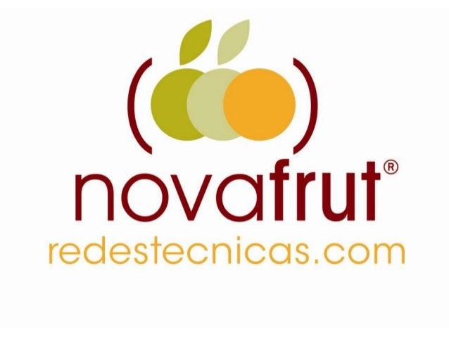 Instalación de Redes             Cortavientos en FruticulturaLos cortavientos son muy efectivos en fruticultura.Novafrut i...
