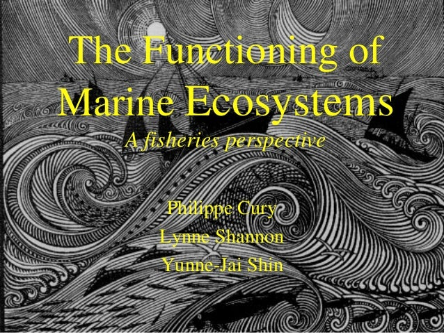 The Functioning of Marine Ecosystems A fisheries perspective Philippe Cury Lynne Shannon Yunne-Jai Shin