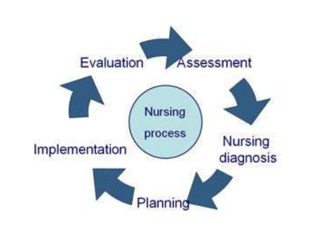 the cycle of nursing theory The strauss–howe generational theory, also known as the fourth turning theory or simply the fourth turning, which was created by authors william strauss and neil howe, describes a theorized recurring generation cycle in american history.