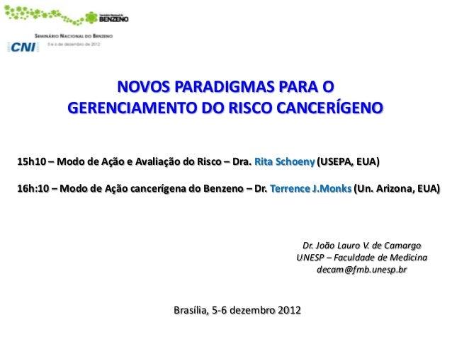 NOVOS PARADIGMAS PARA O          GERENCIAMENTO DO RISCO CANCERÍGENO15h10 – Modo de Ação e Avaliação do Risco – Dra. Rita S...