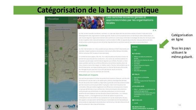 Catégorisation de la bonne pratique 11 Catégorisation en ligne Tous les pays utilisent le même gabarit.