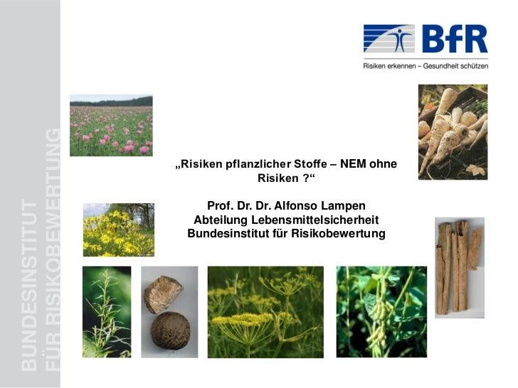 """FÜR RISIKOBEWERTUNG                      """"Risiken pflanzlicher Stoffe – NEM ohne                                     Risik..."""