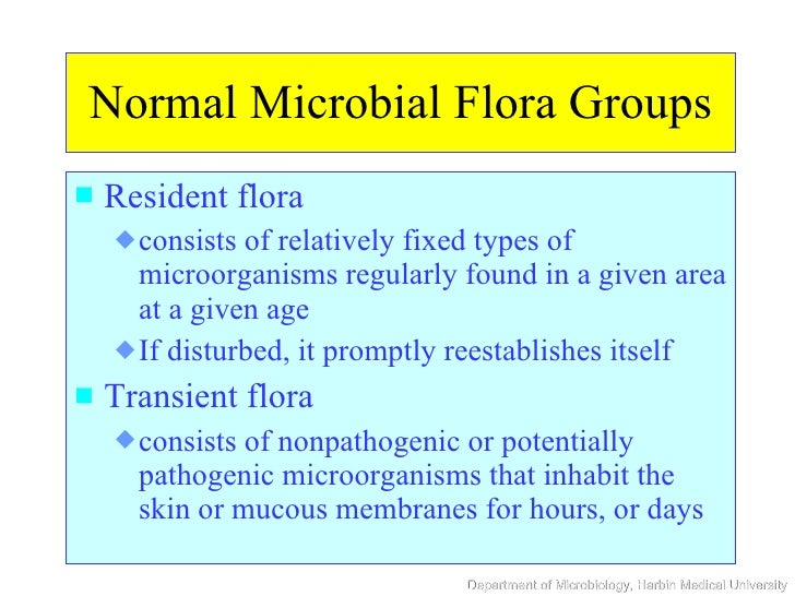 microorganisms normal flora Summary of host-parasite interactions  normal flora = indigenous or  functions and competition with pathogenic microorganisms transient flora: .
