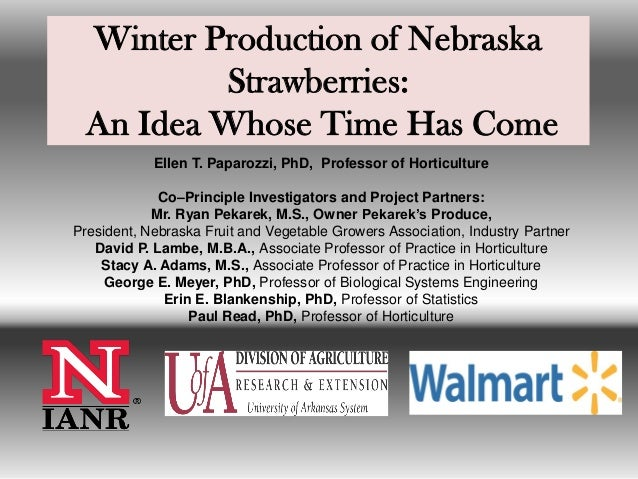 Winter Production of Nebraska Strawberries