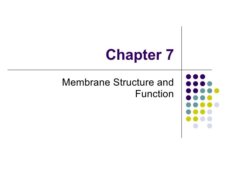 Chapter 7 Membrane Structure and Function