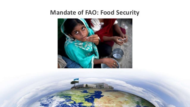 United Nations Food And Agriculture Organization Food Security Definition
