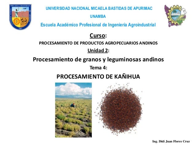UNIVERSIDAD NACIONAL MICAELA BASTIDAS DE APURIMAC                          UNAMBA  Escuela Académico Profesional de Ingeni...