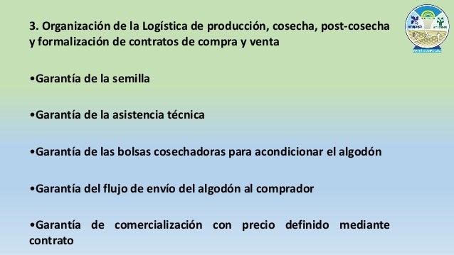 4. Formación de 4 centros de producción, con la participación de 12 ciudades
