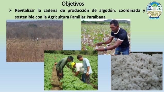  Viabilizar la articulación permanente entre las instituciones asociadas, los agricultores familiares y el mercado