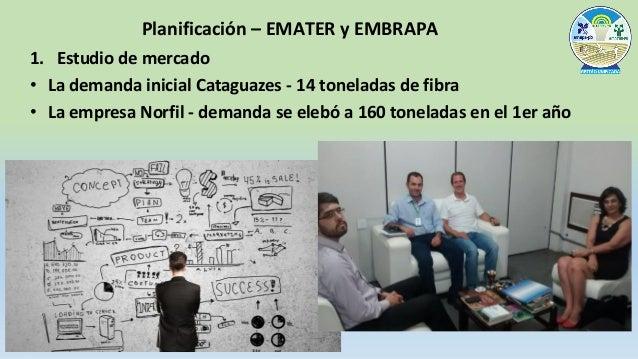 2. Negociación con el mercado para formación de precios justos CUSTO DE PRODUÇÃO - ALGODÃO ORGÂNICO PARA AGRICULTURA FAMIL...